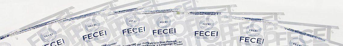Premios FECEI TOP